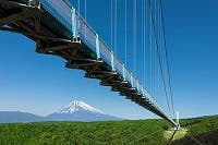 【千葉・青戸発】絶景の日本一の大吊橋「三島スカイウォーク」&マスクメロン1玉狩りお持ち帰り &季節の野菜詰め放題など5つのお土産付き♪