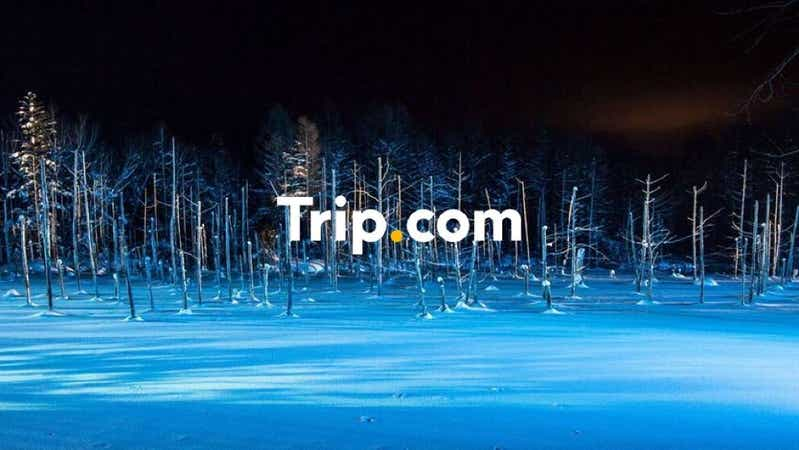 【札幌駅発】<1名2席利用>大人気の旭山動物園とロマンチックな美瑛青い池のライトアップ♪名店『松尾ジンギスカン』食べ飲み放題付【Trip.com公式ツアー】