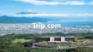 【東京23区発】<プライベートツアー>富士山を望む日本平夢テラスと久能山東照宮&三保松原へ!日本平ホテルではワンランク上のランチブッフェをご堪能♪【Trip.com公式ツアー】